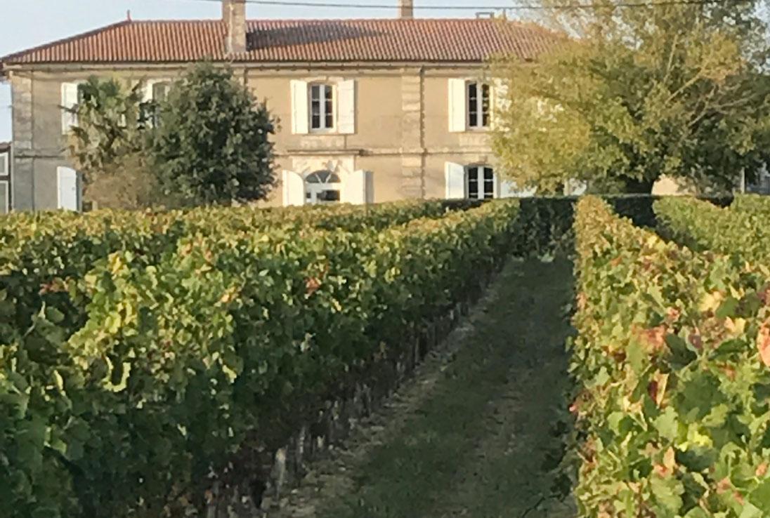 chateau-montaigut-domaine